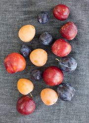 VistaDoro_9317 mixed plums